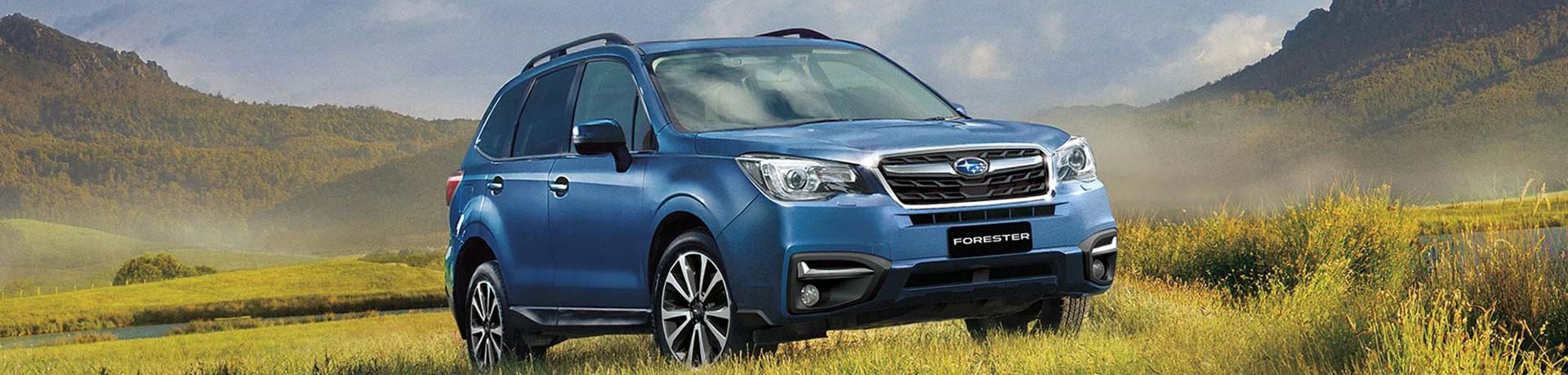 Forester Subaru Echuca Fuel Filter
