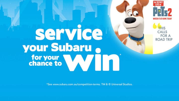 Service and WIN*