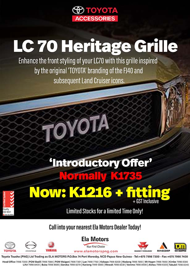 6165-LCGRILLE